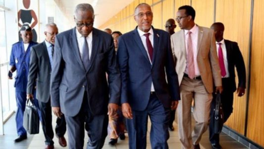 Somaliland hits back at Somalia over Guinea diplomatic row